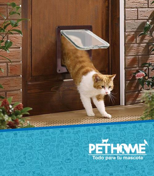 Puertas abatibles para gatos