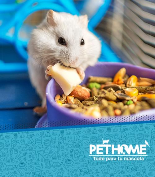 Alimentos de Hamster/Jerbos/Ratas