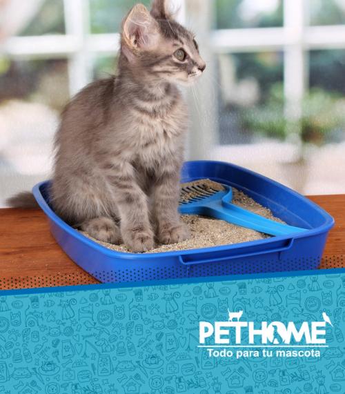 Baños y Arenas para gatos