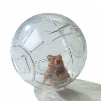 Bola Esfera Para Hamsters