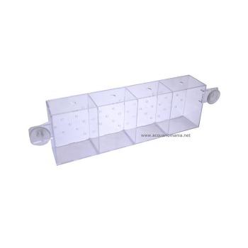 Betta Container 4 Compartimientos Para Acuarios