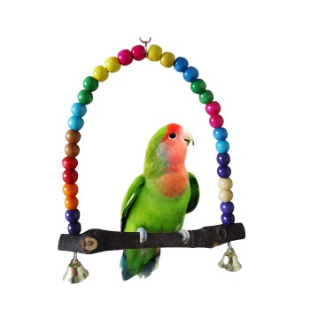 Columpio Madera Colores Para Aves