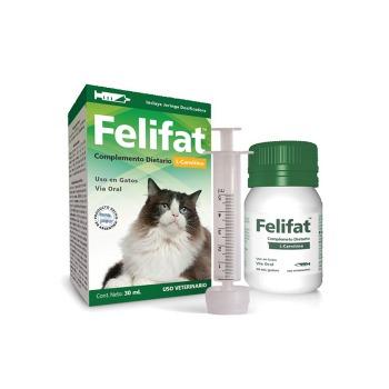 Felifat L-Carnitina Control Peso