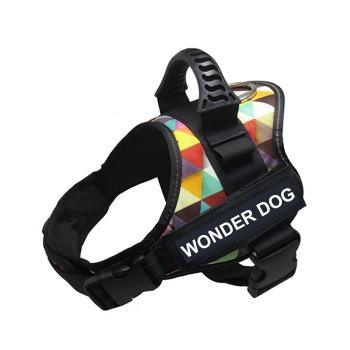 Arnes Wonder Dog  Pro Colores Abstractos