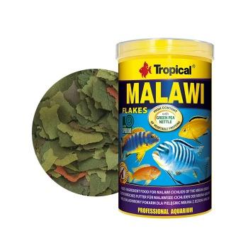 Tropical Alimento cíclidos de Malawi