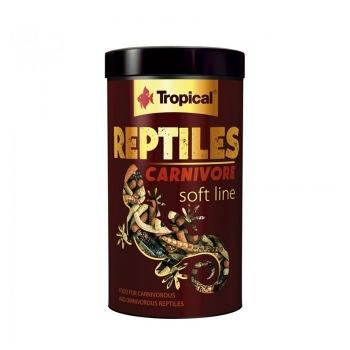 Tropical Reptiles Carnivore