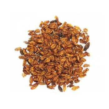Alimento pupas del gusano de la seda