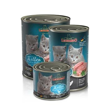Leonardo Latas Quality Kitten