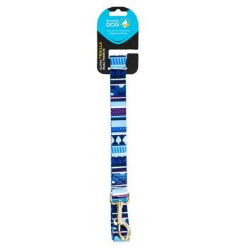 Wonder Dog Trailla Diseño Tramas Azul