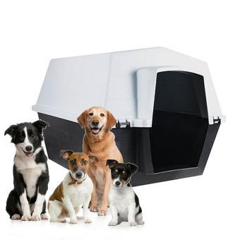 Casa para perros Popular