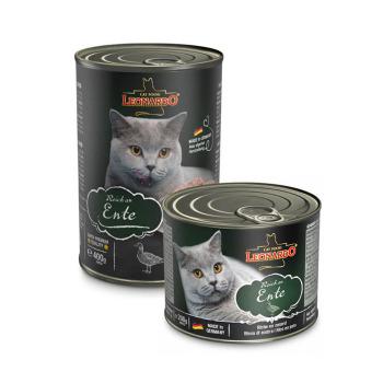 Leonardo Latas Pato para Gatos