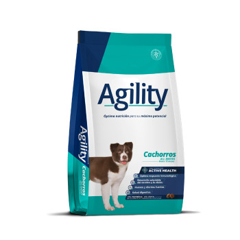 Agility Perro Cachorro All Breed