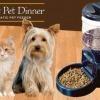 Alimentador Automático para Perros y Gatos
