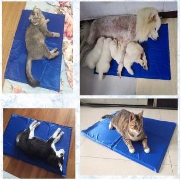 Manta Refrescante para perros y gatos